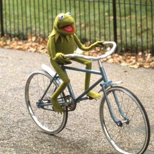 frog on bike